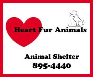 Heart Fur Animals