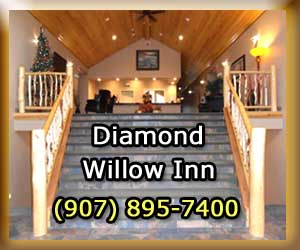 Diamond Willow Inn